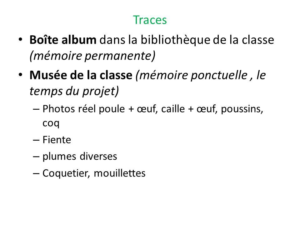 Traces Boîte album dans la bibliothèque de la classe (mémoire permanente) Musée de la classe (mémoire ponctuelle, le temps du projet) – Photos réel po