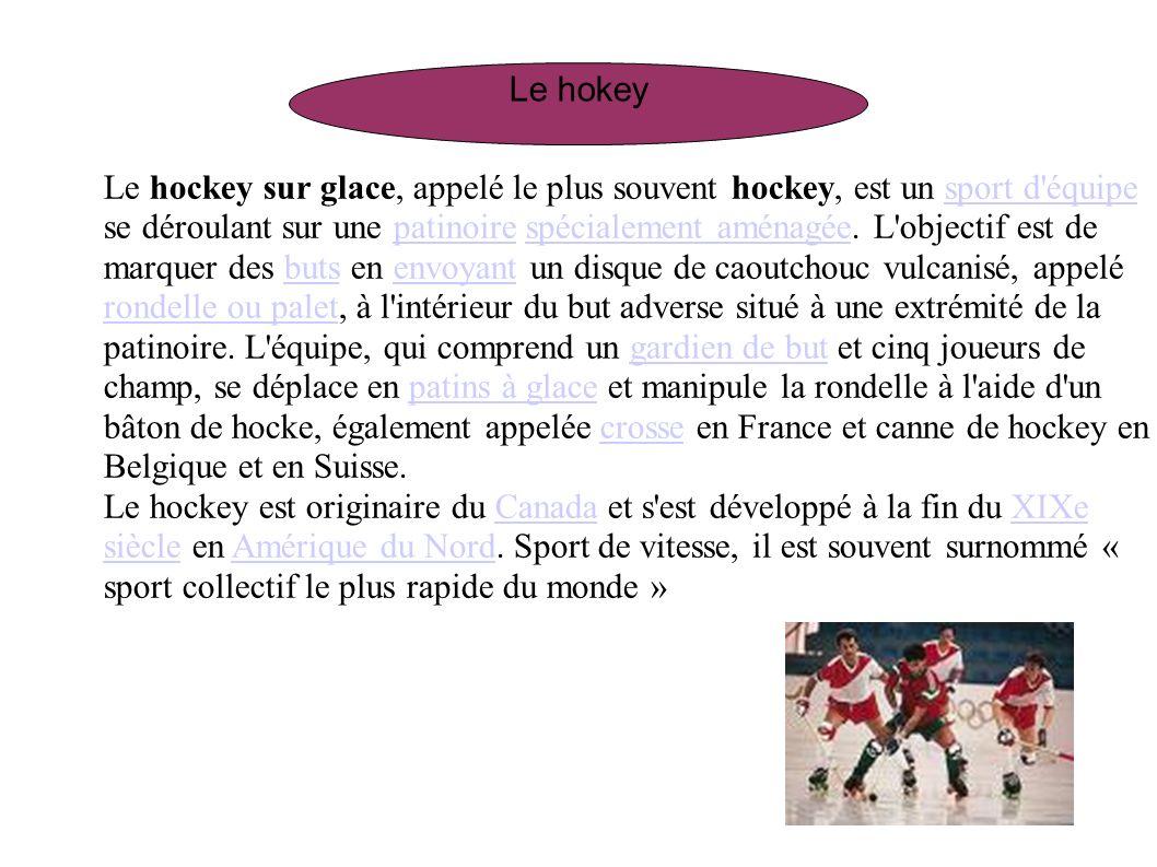 Le hockey sur glace, appelé le plus souvent hockey, est un sport d'équipe se déroulant sur une patinoire spécialement aménagée. L'objectif est de marq