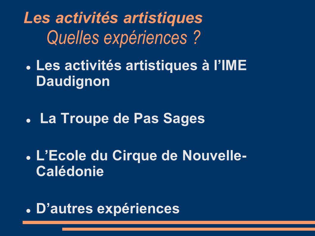 Les activités artistiques Quelles expériences ? Les activités artistiques à lIME Daudignon La Troupe de Pas Sages LEcole du Cirque de Nouvelle- Calédo