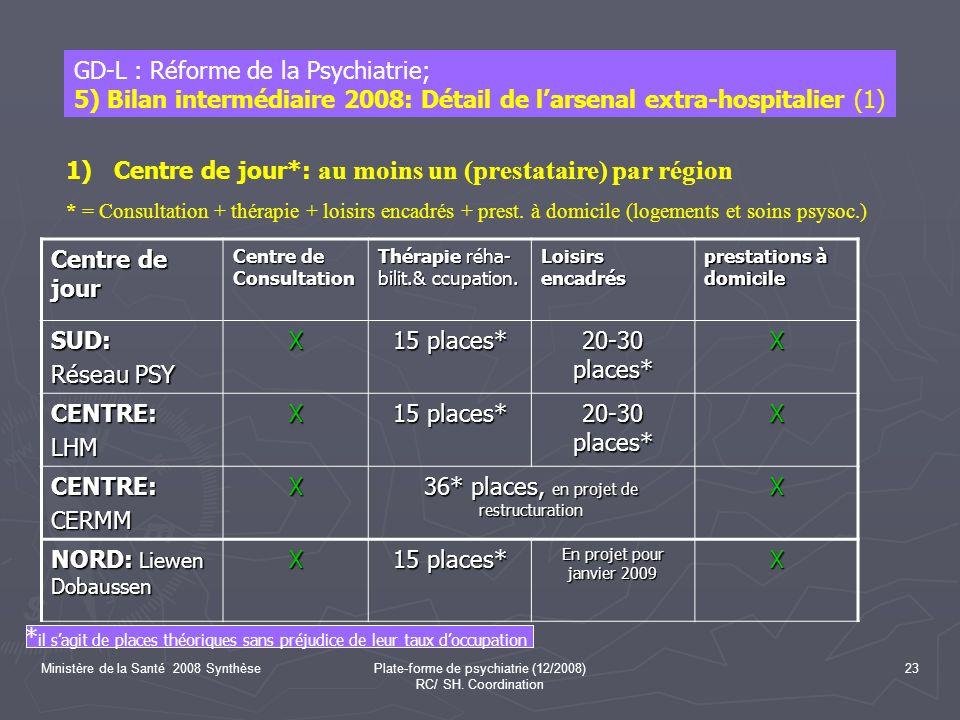 Ministère de la Santé 2008 SynthèsePlate-forme de psychiatrie (12/2008) RC/ SH.