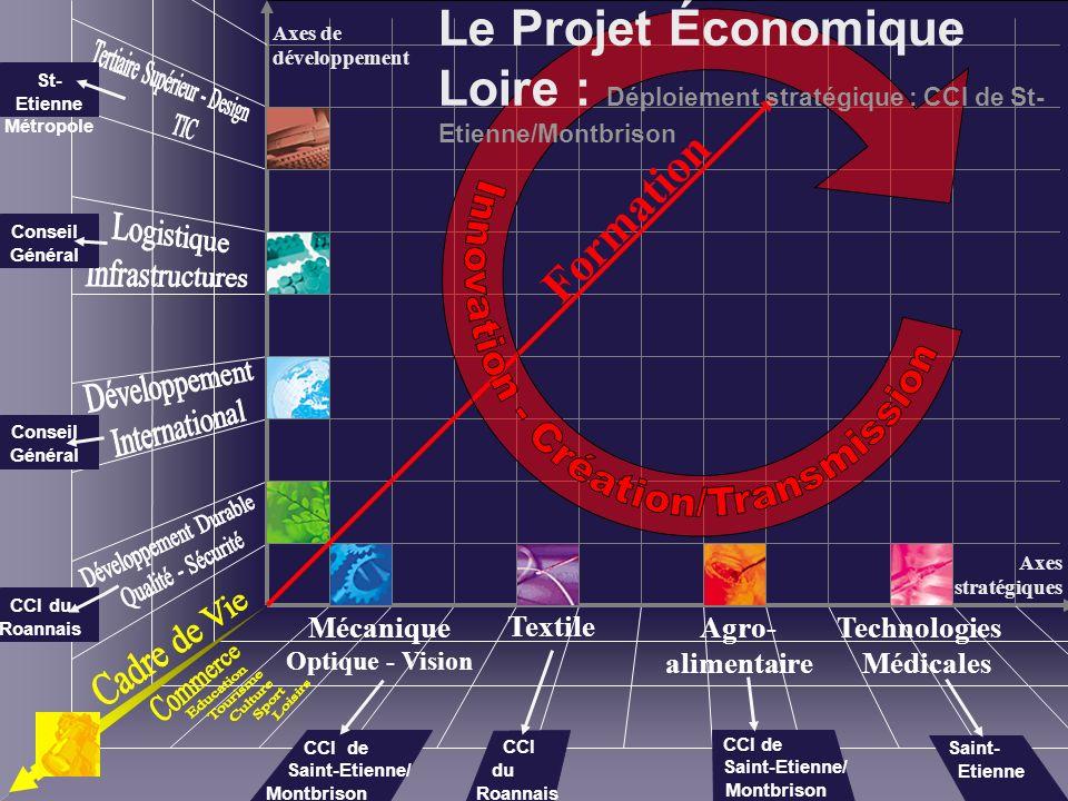 Formation Mécanique Optique - Vision Textile Technologies Médicales Agro- alimentaire Axes de développement Axes stratégiques St- Etienne Métropole Co