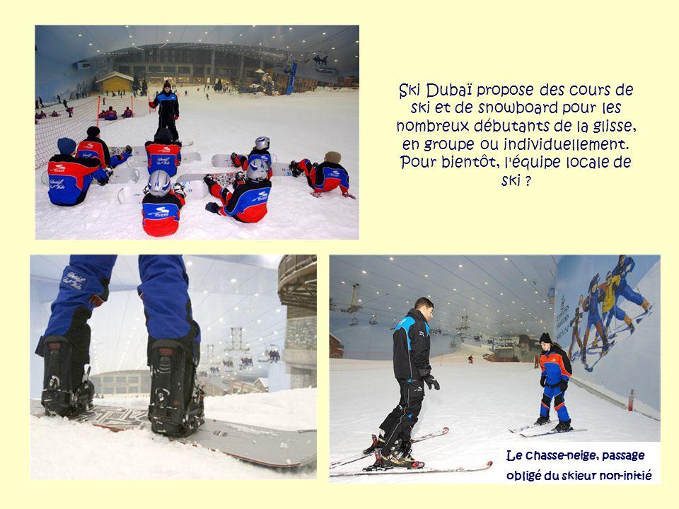 Ski Dubaï n'a oublié aucun sport de glisse : le bobsleigh a aussi droit à sa piste double. Une piste qui attire la curiosité des passants en manches c