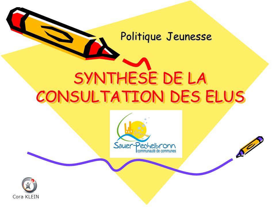 SYNTHESE DE LA CONSULTATION DES ELUS Politique Jeunesse Cora KLEIN