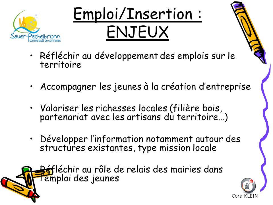 Emploi/Insertion : ENJEUX Réfléchir au développement des emplois sur le territoire Accompagner les jeunes à la création dentreprise Valoriser les rich
