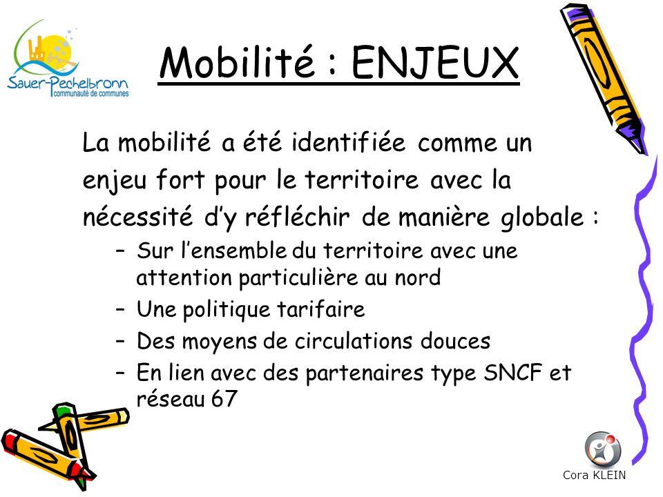 Mobilité : ENJEUX La mobilité a été identifiée comme un enjeu fort pour le territoire avec la nécessité dy réfléchir de manière globale : –Sur lensemb