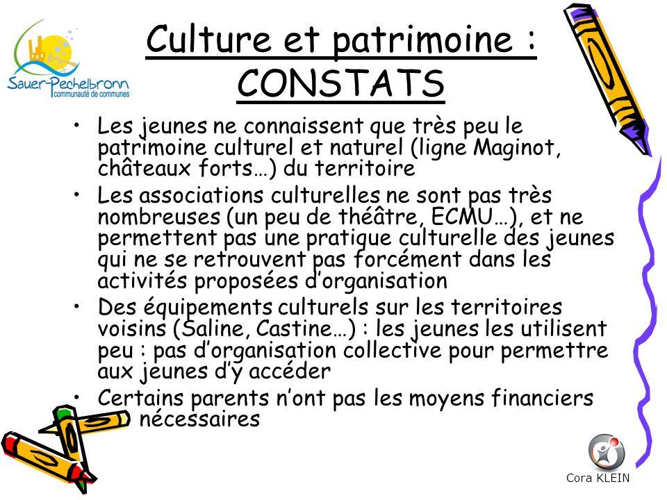 Culture et patrimoine : CONSTATS Les jeunes ne connaissent que très peu le patrimoine culturel et naturel (ligne Maginot, châteaux forts…) du territoi
