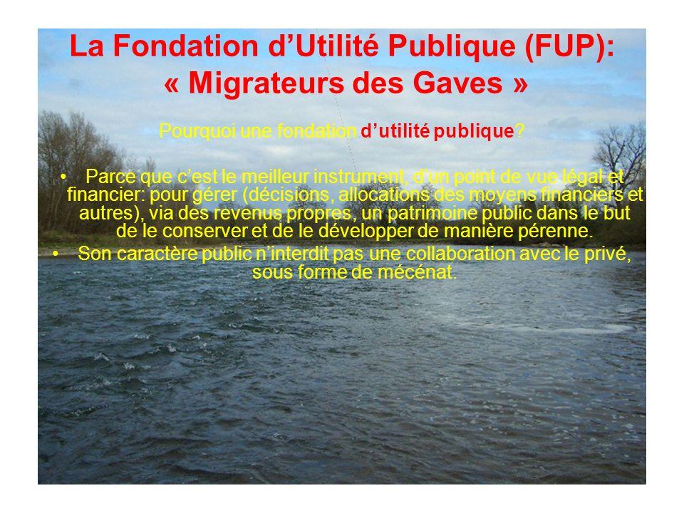 La Fondation dUtilité Publique (FUP): « Migrateurs des Gaves » Pourquoi une fondation dutilité publique.