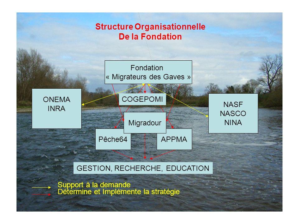 Fondation « Migrateurs des Gaves » ONEMA INRA Pêche64APPMA NASF NASCO NINA Support à la demande Détermine et Implémente la stratégie GESTION, RECHERCHE, EDUCATION Migradour Structure Organisationnelle De la Fondation COGEPOMI