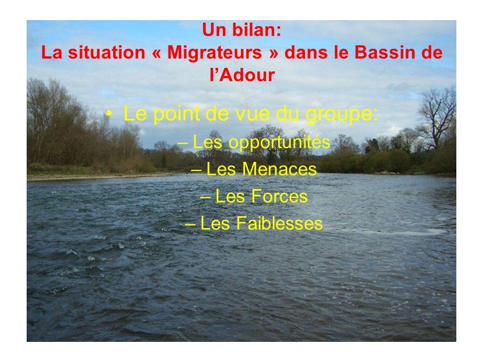 Un bilan: La situation « Migrateurs » dans le Bassin de lAdour Le point de vue du groupe: –Les opportunités –Les Menaces –Les Forces –Les Faiblesses