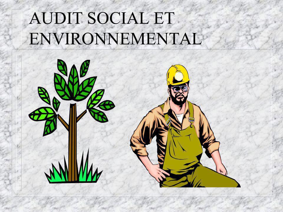 AUDIT SOCIAL ET ENVIRONNEMENTAL