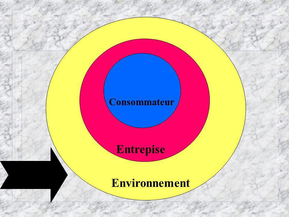 Environnement Entrepise Consommateur