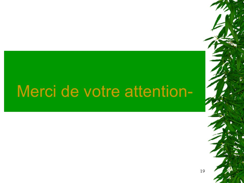 19 Merci de votre attention-