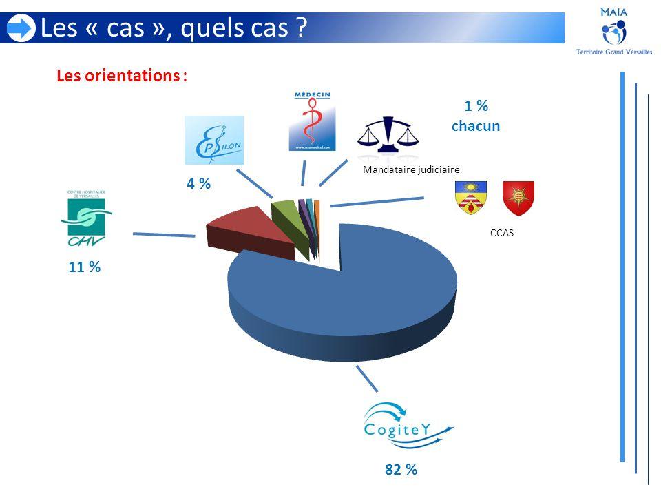 Les orientations : Les « cas », quels cas ? CCAS Mandataire judiciaire 11 % 4 % 82 % 1 % chacun