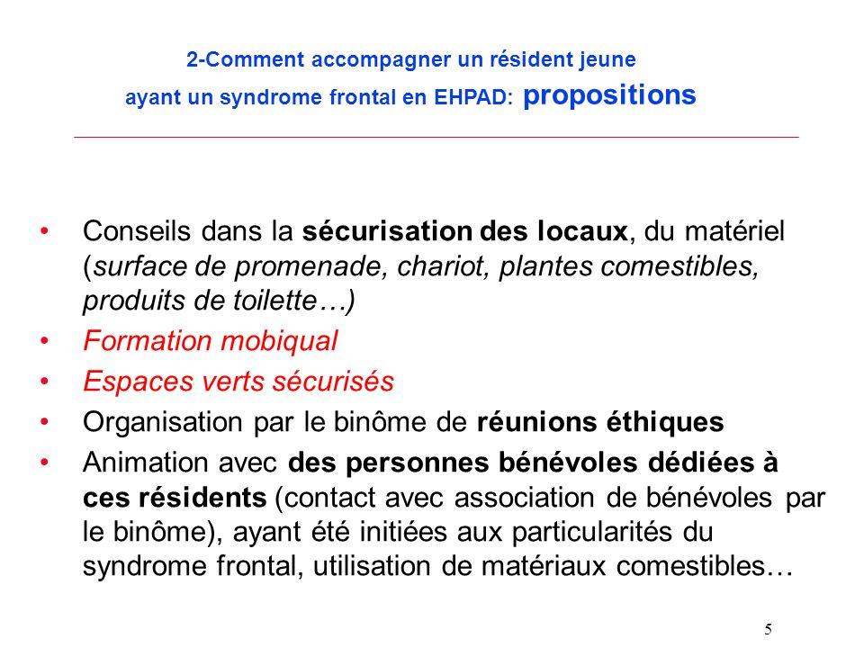 5 2-Comment accompagner un résident jeune ayant un syndrome frontal en EHPAD: propositions Conseils dans la sécurisation des locaux, du matériel (surf