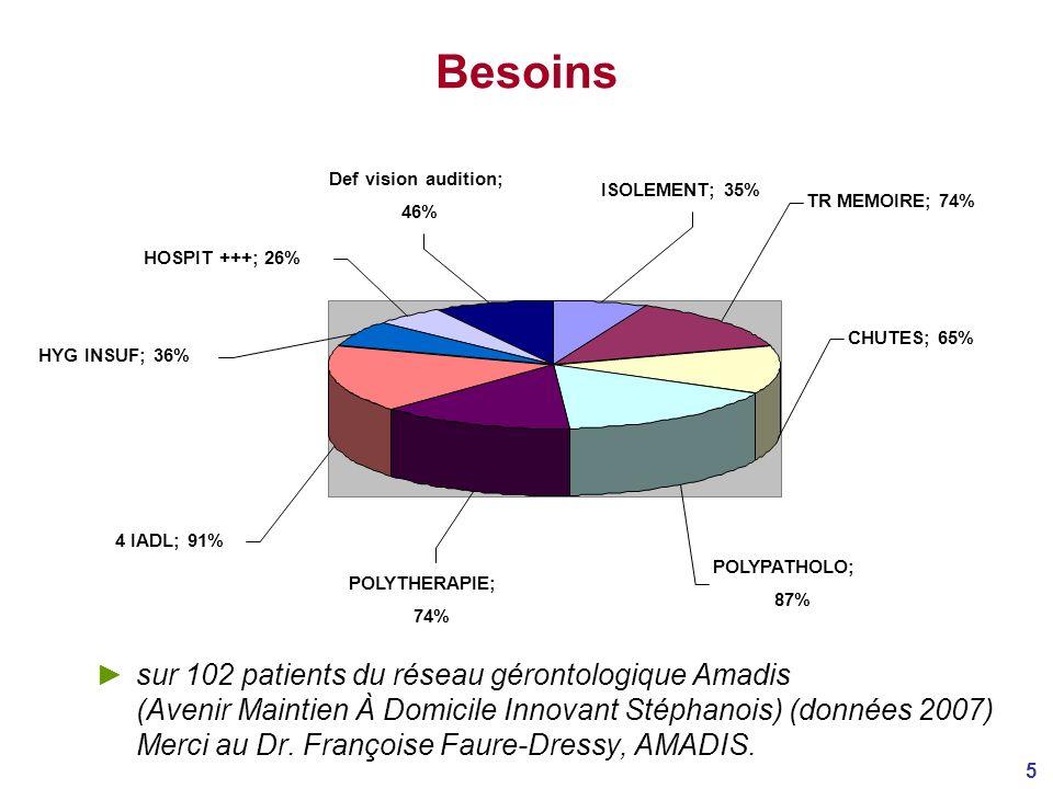 5 Besoins sur 102 patients du réseau gérontologique Amadis (Avenir Maintien À Domicile Innovant Stéphanois) (données 2007) Merci au Dr.