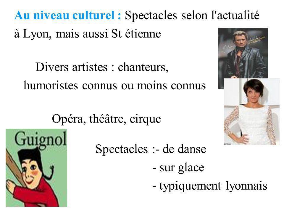 Au niveau culturel : Spectacles selon l actualité à Lyon, mais aussi St étienne Divers artistes : chanteurs, humoristes connus ou moins connus Opéra, théâtre, cirque Spectacles :- de danse - sur glace - typiquement lyonnais