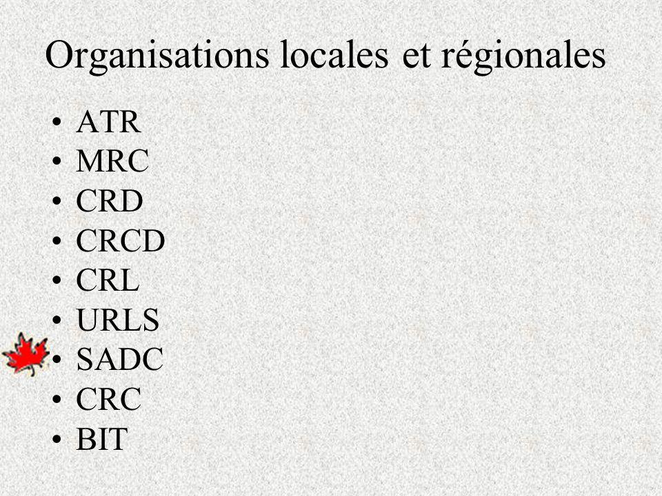 Au niveau local Sensiblement le même mandat et interviennent sur le territoire dune municipalité, dun regroupement de municipalités, ou à léchelle dune MRC Lynda Johnson, Téoros (2000)