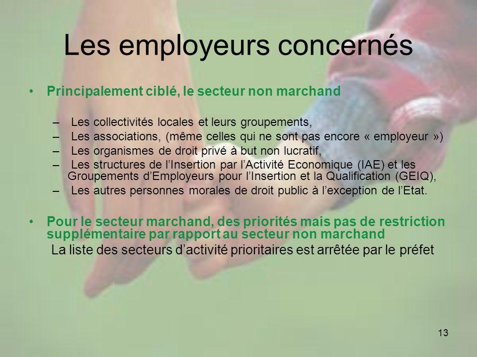 13 Les employeurs concernés Principalement ciblé, le secteur non marchand – Les collectivités locales et leurs groupements, – Les associations, (même