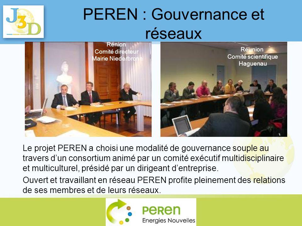 PEREN : Gouvernance et réseaux Le projet PEREN a choisi une modalité de gouvernance souple au travers dun consortium animé par un comité exécutif mult