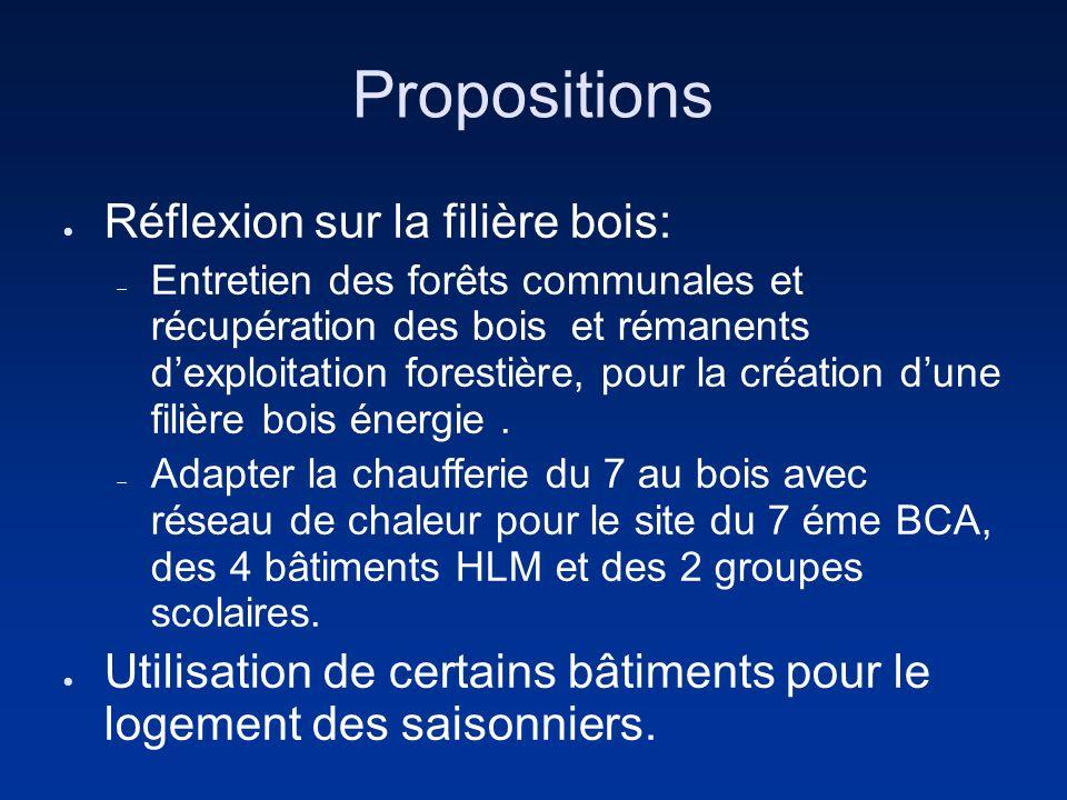 Propositions Réflexion sur la filière bois: Entretien des forêts communales et récupération des bois et rémanents dexploitation forestière, pour la création dune filière bois énergie.