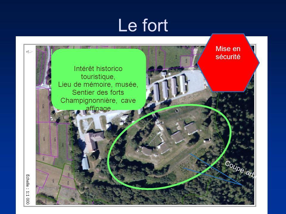 Le fort Intérêt historico touristique, Lieu de mémoire, musée, Sentier des forts Champignonnière, cave affinage Coupe arbres Mise en sécurité