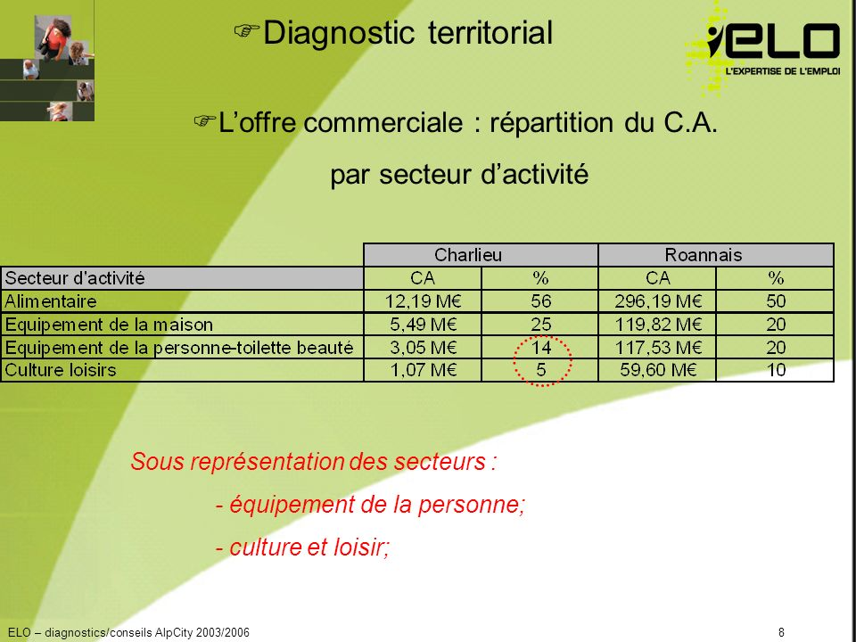 ELO – diagnostics/conseils AlpCity 2003/20068 Diagnostic territorial Loffre commerciale : répartition du C.A.
