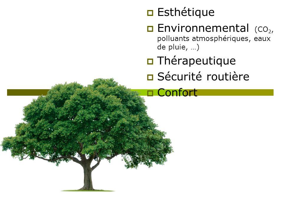 Esthétique Environnemental (CO 2, polluants atmosphériques, eaux de pluie, …) Thérapeutique Sécurité routière Confort