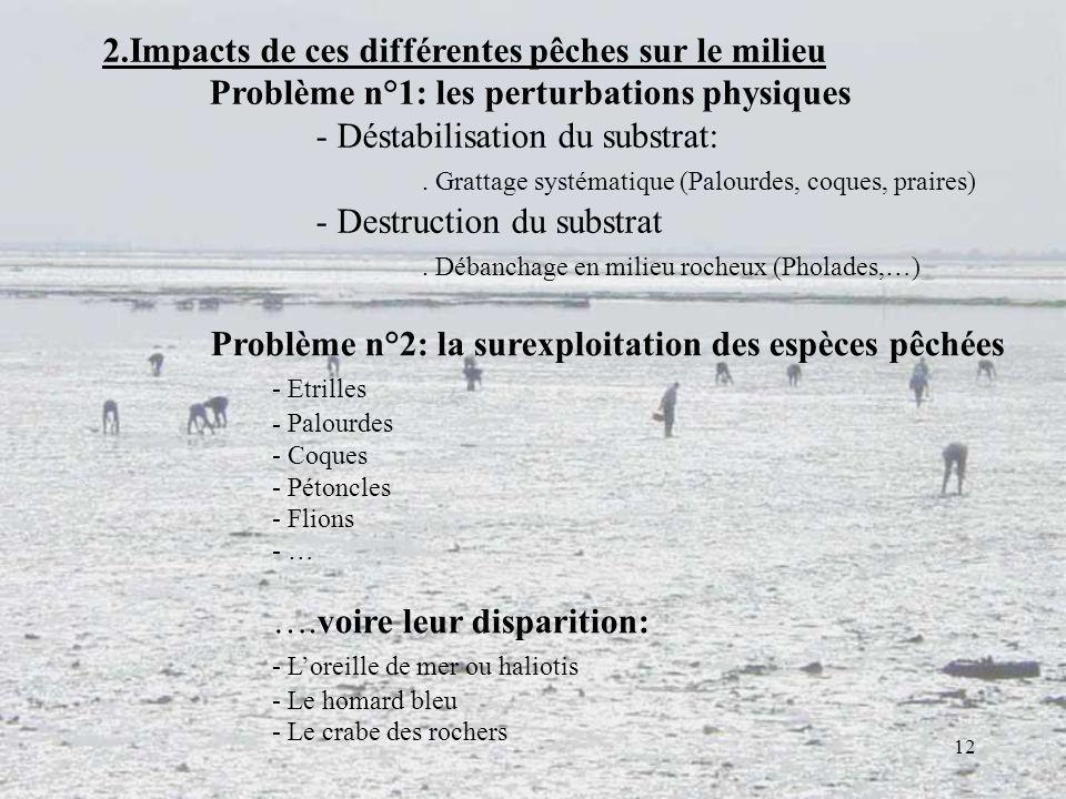 12 2.Impacts de ces différentes pêches sur le milieu Problème n°1: les perturbations physiques - Déstabilisation du substrat:. Grattage systématique (