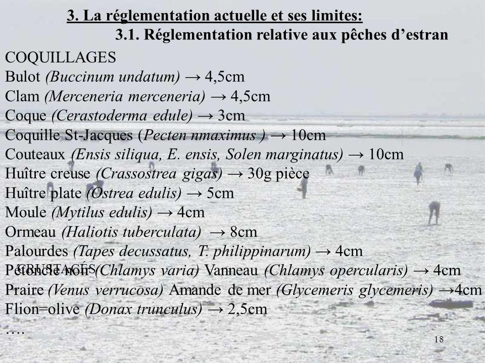 18 3. La réglementation actuelle et ses limites: 3.1. Réglementation relative aux pêches destran COQUILLAGES Bulot (Buccinum undatum) 4,5cm Clam (Merc