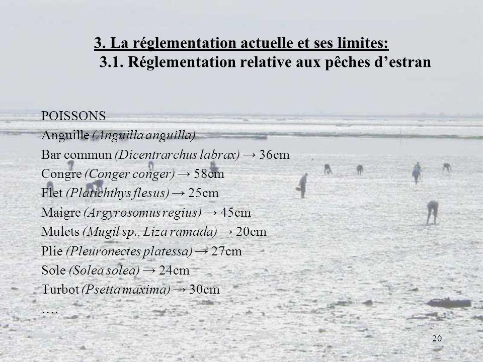 20 3. La réglementation actuelle et ses limites: 3.1. Réglementation relative aux pêches destran POISSONS Anguille (Anguilla anguilla) Bar commun (Dic