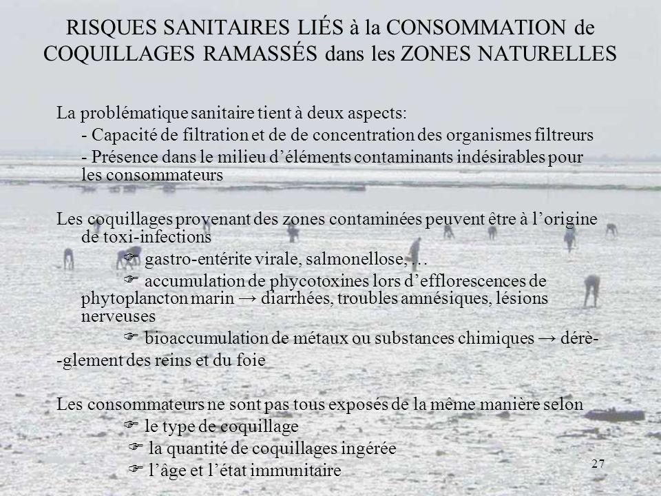 27 RISQUES SANITAIRES LIÉS à la CONSOMMATION de COQUILLAGES RAMASSÉS dans les ZONES NATURELLES La problématique sanitaire tient à deux aspects: - Capa
