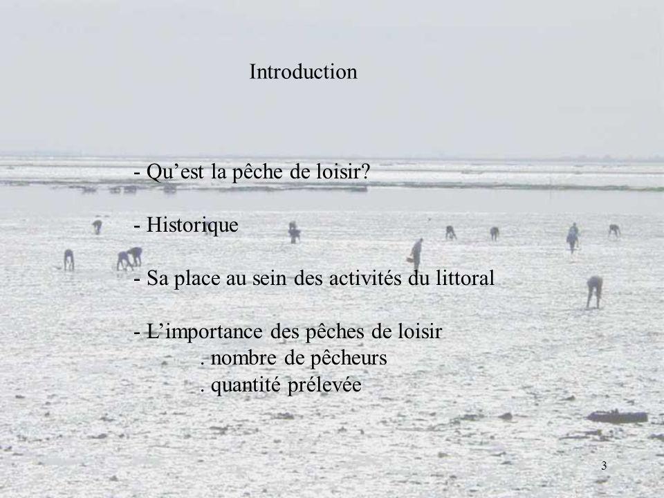 3 - Quest la pêche de loisir? - Historique - Sa place au sein des activités du littoral - Limportance des pêches de loisir. nombre de pêcheurs. quanti