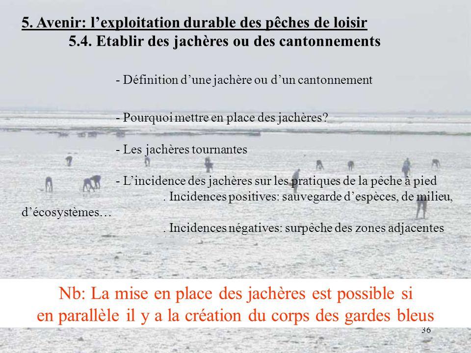 36 5. Avenir: lexploitation durable des pêches de loisir 5.4. Etablir des jachères ou des cantonnements - Définition dune jachère ou dun cantonnement