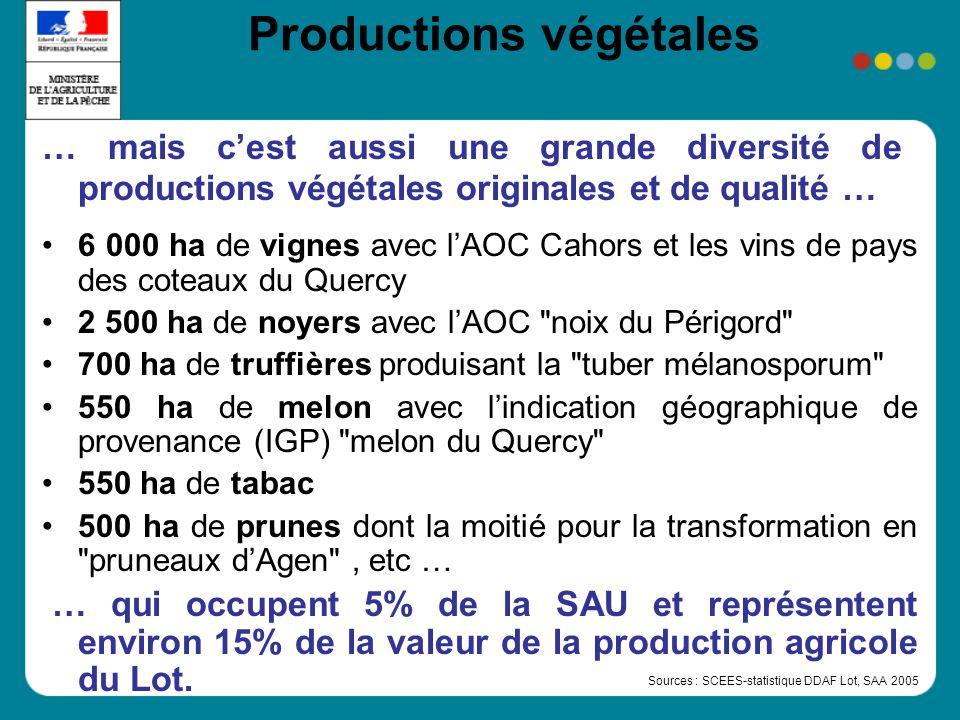 Productions végétales … mais cest aussi une grande diversité de productions végétales originales et de qualité … 6 000 ha de vignes avec lAOC Cahors et les vins de pays des coteaux du Quercy 2 500 ha de noyers avec lAOC noix du Périgord 700 ha de truffières produisant la tuber mélanosporum 550 ha de melon avec lindication géographique de provenance (IGP) melon du Quercy 550 ha de tabac 500 ha de prunes dont la moitié pour la transformation en pruneaux dAgen , etc … … qui occupent 5% de la SAU et représentent environ 15% de la valeur de la production agricole du Lot.