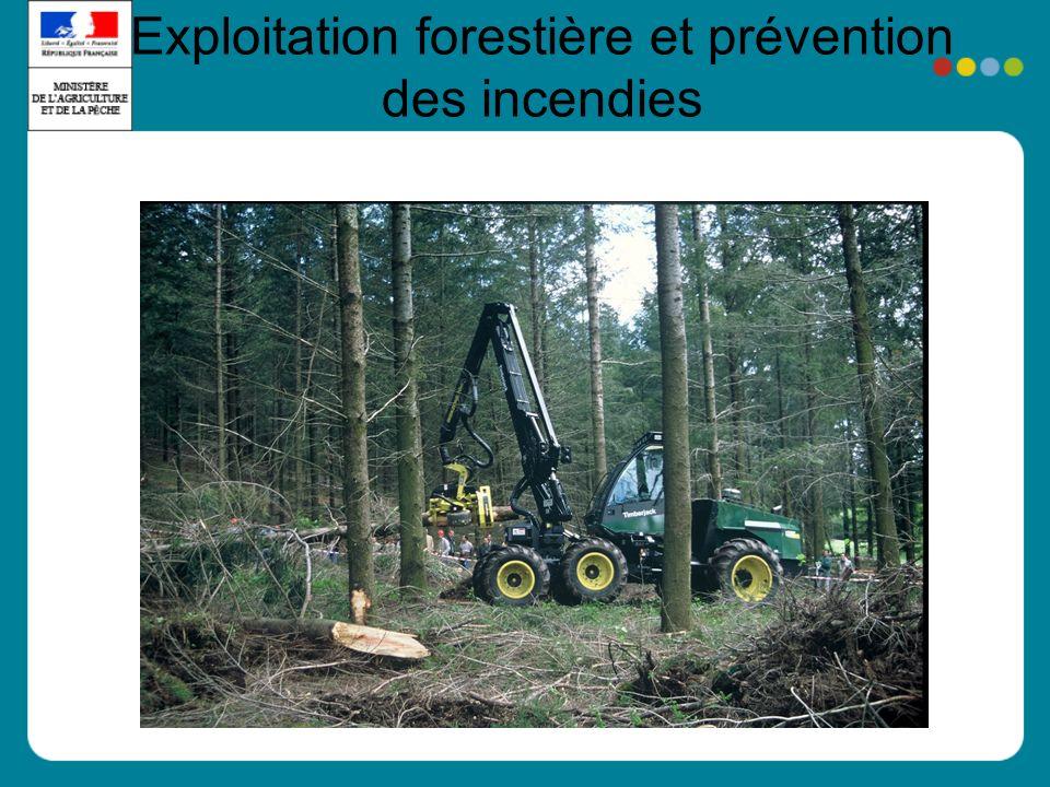 Exploitation forestière et prévention des incendies