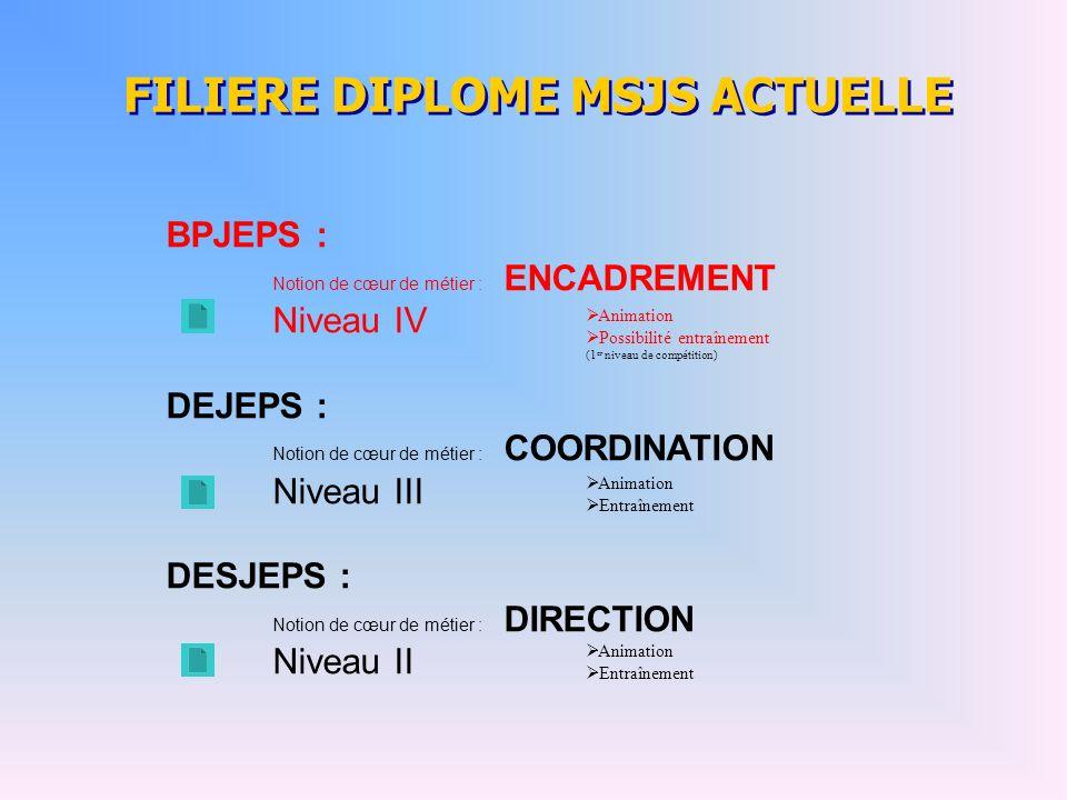 FILIERE DIPLOME MSJS ACTUELLE BPJEPS : Notion de cœur de métier : ENCADREMENT Niveau IV DEJEPS : Notion de cœur de métier : COORDINATION Niveau III DE