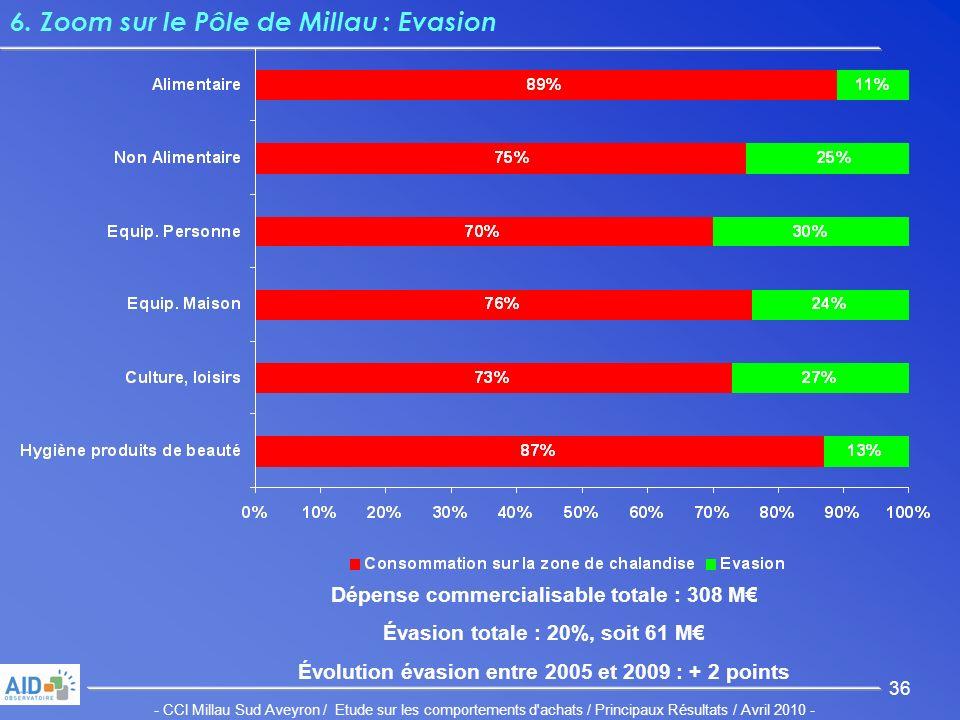 - CCI Millau Sud Aveyron / Etude sur les comportements d achats / Principaux Résultats / Avril 2010 - 36 6.
