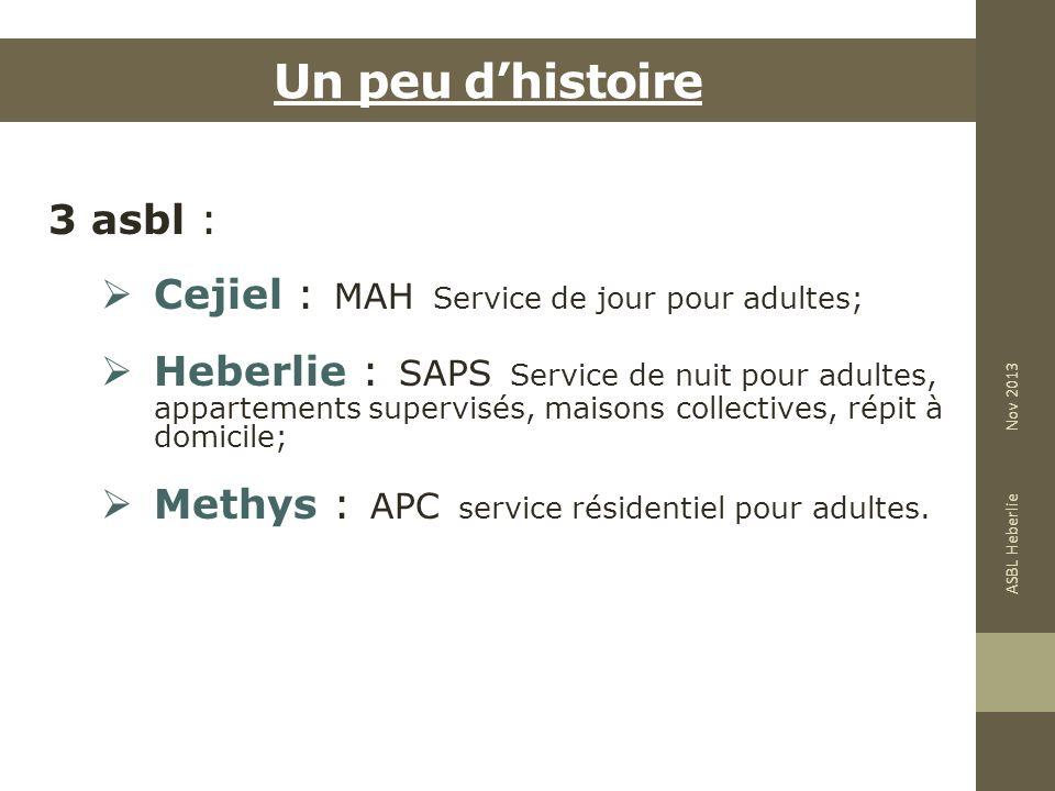 Un peu dhistoire 3 asbl : Cejiel : MAH Service de jour pour adultes; Heberlie : SAPS Service de nuit pour adultes, appartements supervisés, maisons co