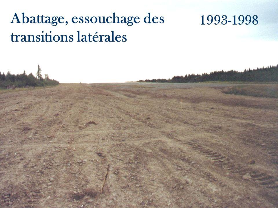 Abattage, essouchage des transitions latérales 1993-1998
