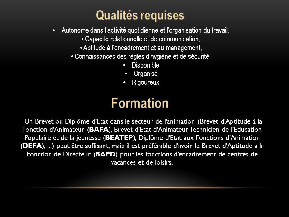 BAFD Un Brevet ou Diplôme d'Etat dans le secteur de l'animation (Brevet d'Aptitude à la Fonction d'Animateur (BAFA), Brevet d'Etat d'Animateur Technic