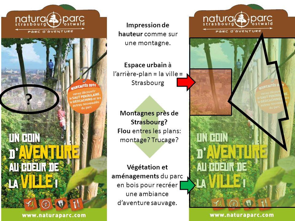 Végétation et aménagements du parc en bois pour recréer une ambiance daventure sauvage.