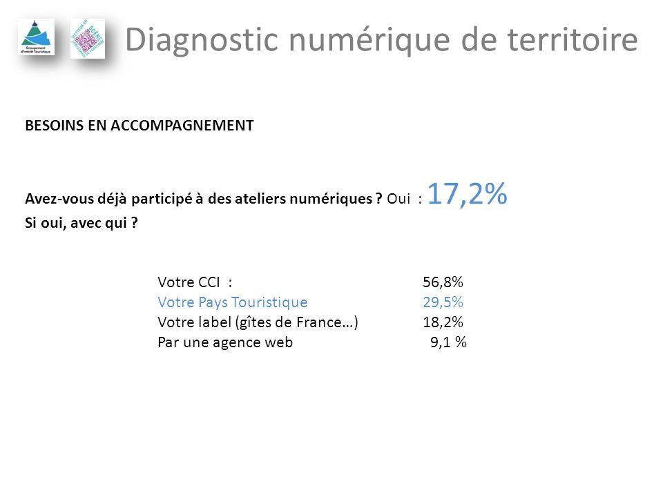 Diagnostic numérique de territoire BESOINS EN ACCOMPAGNEMENT Avez-vous déjà participé à des ateliers numériques ? Oui : 17,2% Si oui, avec qui ? Votre
