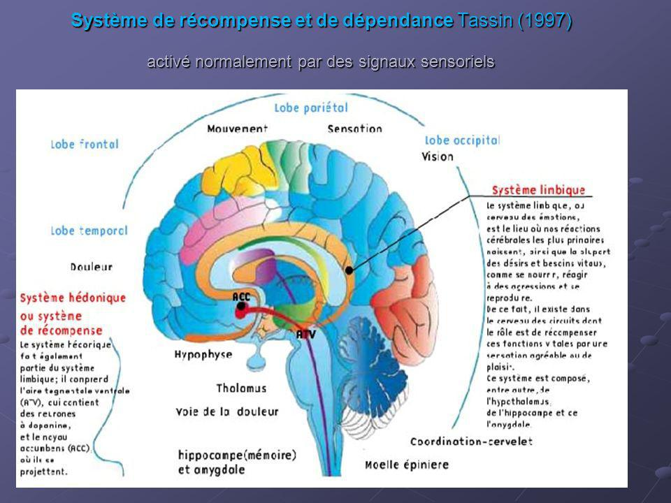 Système de récompense et de dépendance Tassin (1997) activé normalement par des signaux sensoriels Système de récompense et de dépendance Tassin (1997