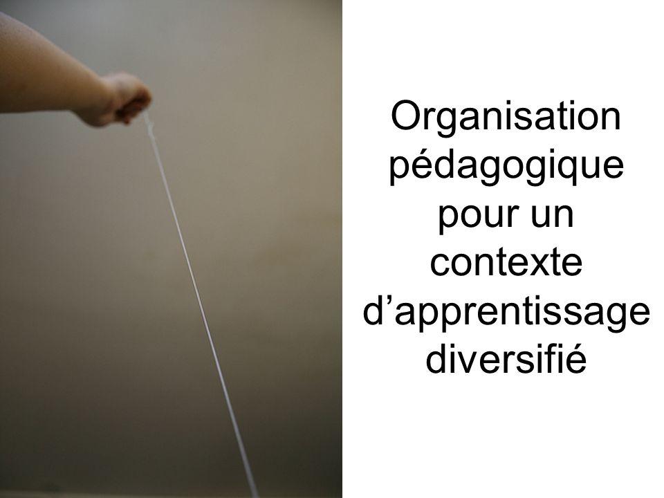 Organisation pédagogique pour un contexte dapprentissage diversifié