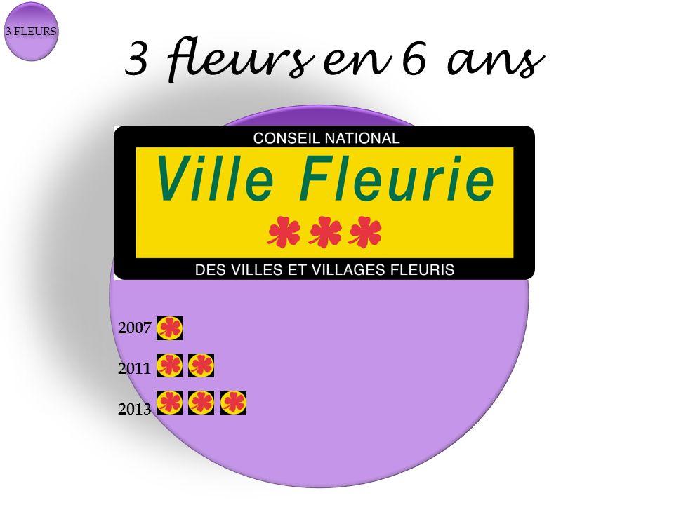 3 fleurs en 6 ans 2007 2011 2013 2007 2011 2013
