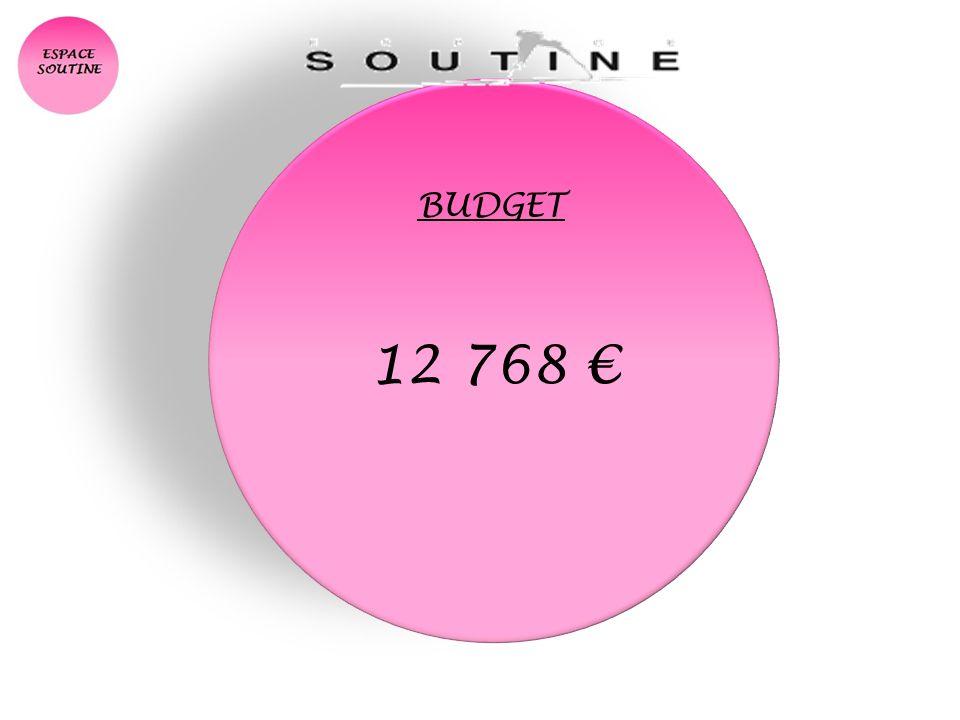 BUDGET 12 768
