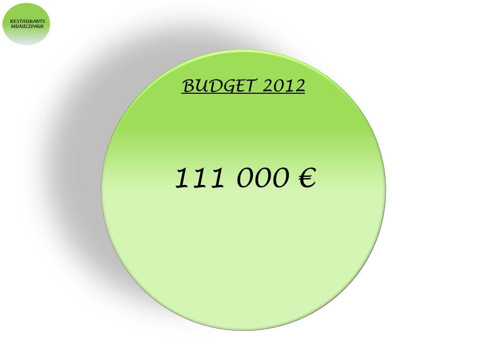 BUDGET 2012 111 000
