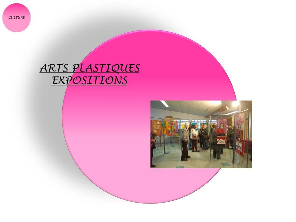 ARTS PLASTIQUES EXPOSITIONS