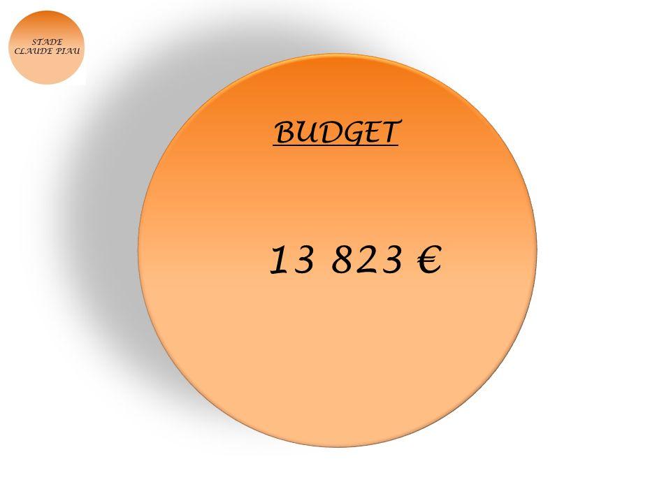 BUDGET 13 823