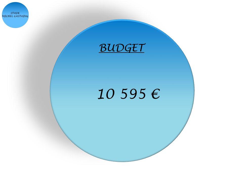 BUDGET 10 595